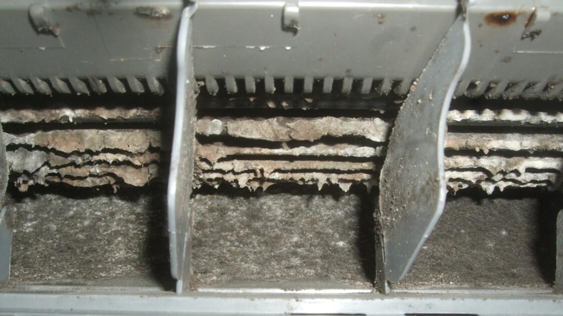 掃除 エアコン カビ